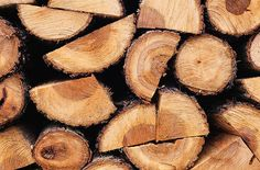Firewood tips and best bets from The Old Farmer's Almanac