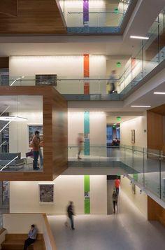 Studio SC: Allen Institute More