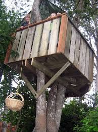 Image result for simple backyard tree forts