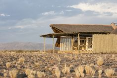African safari holidays, team building experiences and wildlife photography experiences accommodation Little Kulala, Sosussvlei, Namibia. Safari Holidays, Namib Desert, Richest In The World, Old Trees, Game Reserve, Quiver, African Safari, White Sand Beach, Landscape Photographers