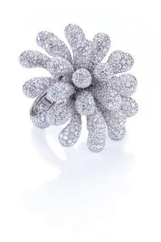 Cantamessa   Clavette-Ring-white: 69.30 grams Gold, 58.67-carat White Diamonds
