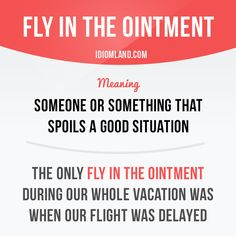 """""""Fly in the ointment"""" is someone or something that spoils a good situation. Example: The only fly in the ointment during our whole vacation was when our flight was delayed. #idiom"""