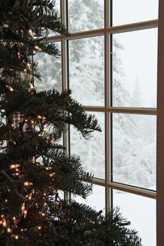 Being wrapped in a cozy plaid and watching winter wonderland is the best! #Winter #Weihnachten