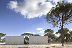 Lisbon based architects RRJ Arquitectos recently completed this minimalist concrete house in Comporta, Grândola, Portugal. A composition of. Portugal, Modern Bungalow House, Concrete Houses, Concrete Walls, Villa, Fancy Houses, Minimal Home, Open Window, House Floor Plans