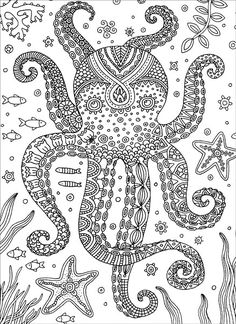 Octopus : Colorful Meditations Coloring Book by Stephanie Peterson Jones