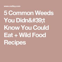 5 Common Weeds You Didn't Know You Could Eat + Wild Food Recipes