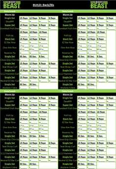 body beast workout tracker sheet back bis more body beast workouts ...