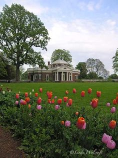 Thomas Jefferson 39 S Home Monticello Overlooking His Lovely