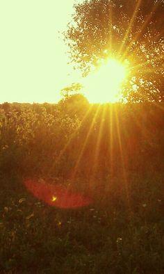 Sunset. Elburn Illinois