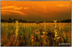 End of the Rainbow - Roznos Meadow, Devil's Lake State Park - www.skilletcreekphotography.com