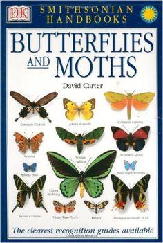 Smithsonian Handbooks: Butterflies & Moths: David J. Carter: 9780789489838: Amazon.com: Books