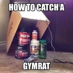 If your workout buddy is nowhere to be found, place one of these traps in the kitchen. Guaranteed to catch gymrats of most sizes.