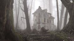 creepy manor; abandoned house in the foggy woods
