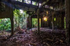 An overgrown ruin on Corregidor Island abandoned since World War II