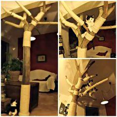 DIY: Hacer un árbol rascador para tu gato