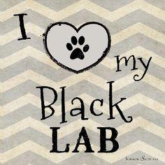 I Love My Black Lab Dog by Summer Snow
