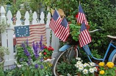 What's not to love?? White picket fence, pretty flowers, old bike and America!!