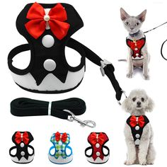 Home & Garden Able Fashion Mesh Cat Dog Harness Bowtie Pet Puppy Walking Vest For Small Dogs Soft Pet Leash Set Chihuahua Supplies Doggyzstyl 2019 New Fashion Style Online