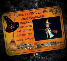 Magical Guide Camp Flying licence