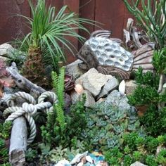 Seaside garden with fish and driftwood. Wow this would be a great addition to my yard...well when I have my own again, and succulents grow well in Arizona!