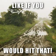 I totally would!!!