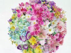 Ideas Floral Wallpaper Desktop Backgrounds Pink Flowers For 2019 Floral Wallpaper Desktop, Wallpaper Iphone Cute, Flower Wallpaper, Floral Wallpapers, Exotic Flowers, Colorful Flowers, Pink Flowers, Beautiful Flowers Pictures, Amazing Flowers
