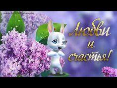 Zoobe Zajka Prikolnoe Pozdravlenie S 8 Marta Youtube