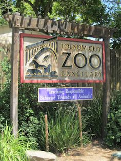 Volunteer to hang holidays for the Folsom City Zoo Sanctuary's Wild Nights and Holiday Lights in December.