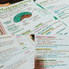 Cute Notes//Colourful