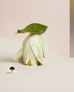 Dead food for new worlds – Carmen Mitrotta Still Life Photography, Food Photography, Prop Design, Set Design, Food Artists, Still Life Art, Green Nature, Food Coloring, Creative Food