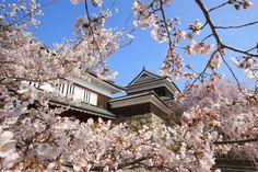 Tokyo Japan, Mansions, House Styles, Travel, Wallpaper, Tokyo, Viajes, Manor Houses, Villas