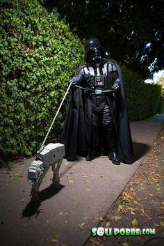 Passeando de boa com o cachorro..