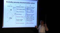 MUDR.Karel Erben: Homocystein a důsledky zvýšené hladiny Cholesterol, Dna, Health, Youtube, Salud, Healthy, Youtubers, Youtube Movies, Gout