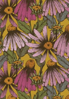 Coneflowers/Echinacea floral Stretched Canvas by Kelsey Oseid | Society6