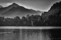 Photograph by Stuart Litoff.  An early #morning #solitary #rower on #LakeBled, in the #Julian #Alps of #Slovenia