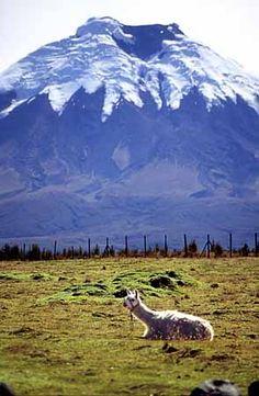 15 jaar geleden was ik bovenop deze vulkaan in Ecuador: de Cotopaxi!