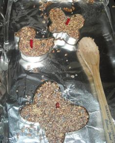 Macaroni Made: Birdseed Biscuits : Macaroni Kid