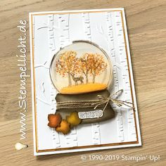 Fall Cards, Winter Cards, Christmas Cards, Holiday Cards, Pumpkin Cards, Christmas Snow Globes, Stampin Up Christmas, Shaker Cards, Thanksgiving Cards