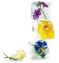 my mother used to do this... berries or eatable flowers in ice cubes... so pretty!