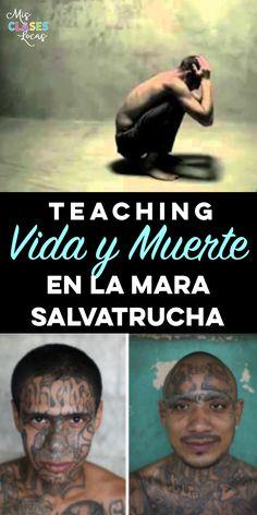 Teaching Vida y Muerte en la Mara Salvatrucha       I just taught the novel Vida y Muerte en la mara Salvatrucha  from Fluency Matters for ...
