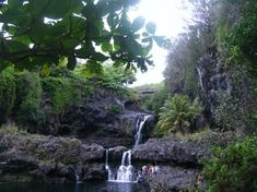 Ohe'o Gulch (Haleakala National Park, HI): Address, Tickets & Tours, Nature & Wildlife Area Reviews - TripAdvisor