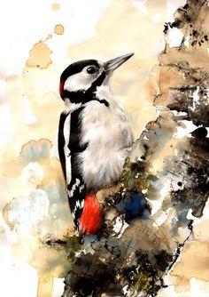 "Saatchi Online Artist: Lucy Newton; Mixed Media ""woodpecker"""