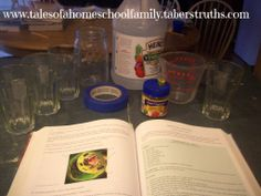 Apologia General Science – Module 10 Labs | Tales of a Homeschool Family