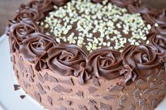 Tort cu alune ciocolata si rom - Retete Timea Brownies, Succulents, Decorative Boxes, Rome, Cake Brownies, Succulent Plants
