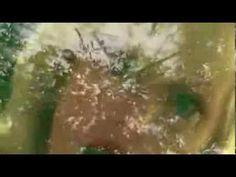 Persuing Persephone - YouTube #Embarazada