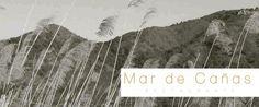 ¿has visitado ya nuestra nueva web ? En ella podrás contactar con nosotros , reservar vía mail, conocer nuestra carta, ver que se puede visitar en portman y mucho más: www.mardecañas.es