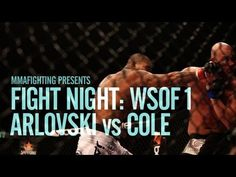 Fight Night: World Series of Fighting 1