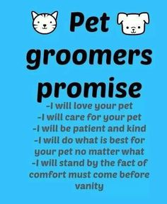This should be something all groomers pride themselves as following - since we pet parents trust them with our fur kids!