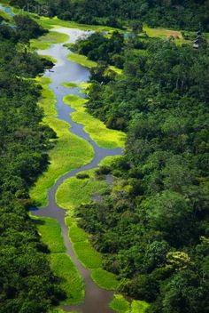 Perú Rio Amazonas el mas caudalozo del mundo en sus inicios en plena selva . Jha15