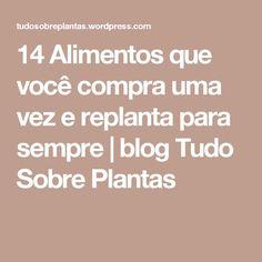 14 Alimentos que você compra uma vez e replanta para sempre   blog Tudo Sobre Plantas